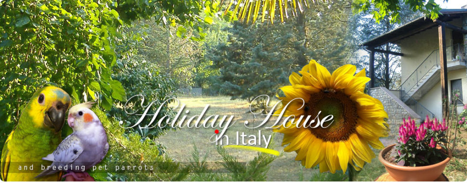 Holiday house in Italy between Bologna and Florence and breeding pet parrots - www.ilgiardinoincantato.it/en